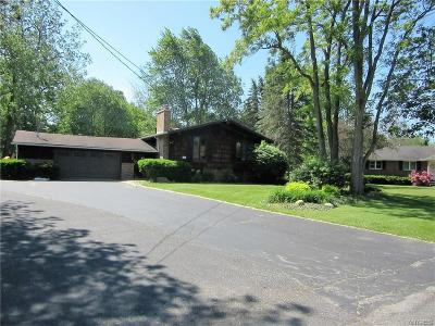 Single Family Home A-Active: 809 Gebhard Lane