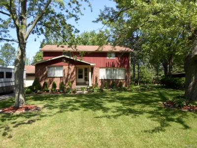 Single Family Home A-Active: 5373 Elm Drive