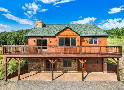 Ellicottville Single Family Home A-Active: 6223 Witch Hollow Road