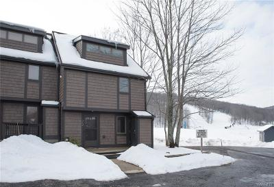 Ellicottville Condo/Townhouse A-Active: 22 Slopeside Road-The Woods
