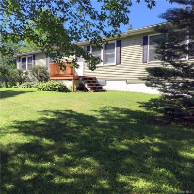 Hinsdale Single Family Home A-Active: 3687 Union Valley Road