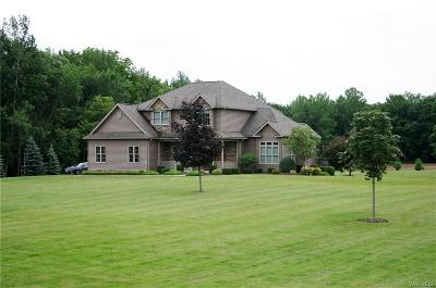 Orleans County Single Family Home A-Active: 11916 Alps Road