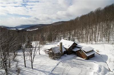 Ellicottville Single Family Home A-Active: 6460 Witch Hollow Road