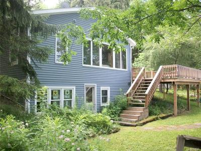 Allegany County, Cattaraugus County Single Family Home A-Active: 8676 County Road 49 Road