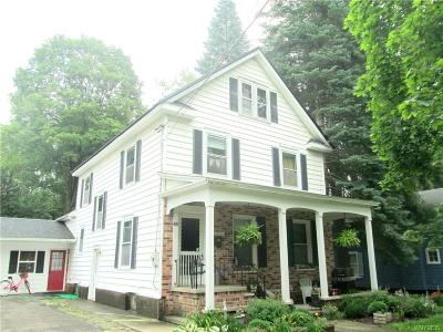 Ellicottville Single Family Home A-Active: 42 Jefferson Street
