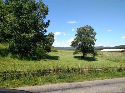 Residential Lots & Land A-Active: Mutton Hollow Road