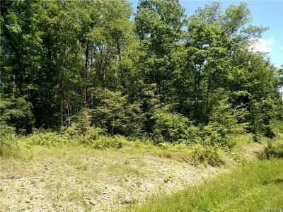 Residential Lots & Land Sold: Mutton Hollow Road