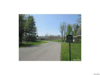 Hamburg Residential Lots & Land A-Active: 4840 McKinley Pkwy 1