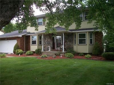 Lewiston Single Family Home A-Active: 4661 Vrooman Drive