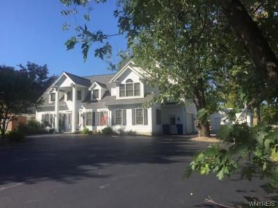 West Seneca Single Family Home For Sale: 860 Union Road