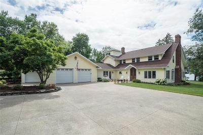 Single Family Home A-Active: 10650 Lake Shore Rd