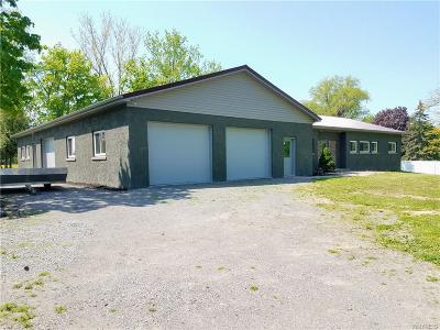Orleans County Single Family Home A-Active: 11084 Maple Ridge Road