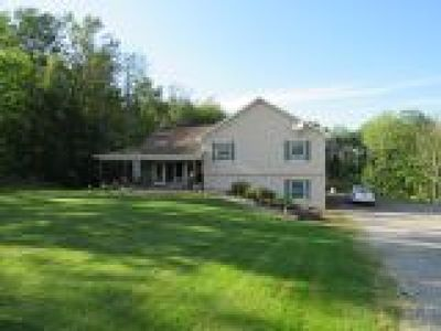 Colden Single Family Home A-Active: 10782 Blanchard Road