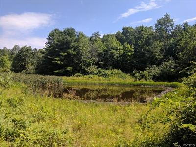 Allegany County, Cattaraugus County Residential Lots & Land A-Active: 6028 Belvedere/Black Road