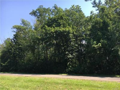 Evans Residential Lots & Land A-Active: Vl Lake Shore Road
