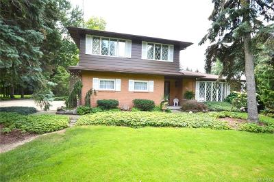 Amherst Single Family Home A-Active: 333 North French Road