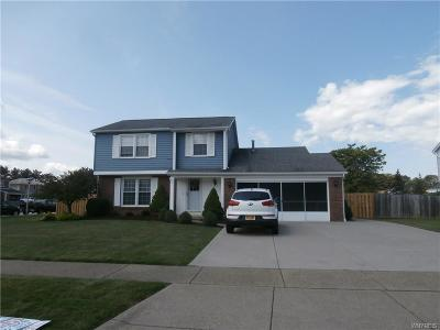West Seneca Single Family Home A-Active: 91 Pine Court North
