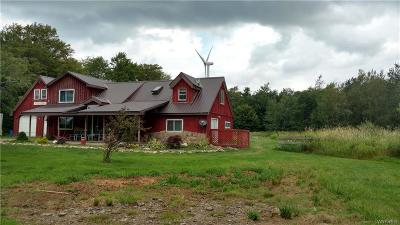 Allegany County, Genesee County, Livingston County, Ontario County, Steuben County, Wyoming County, Yates County Single Family Home A-Active: 3027 West Washburn Road