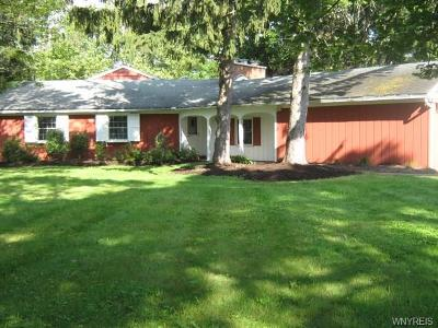 Orchard Park Single Family Home A-Active: 12 Eagle Heights Drive