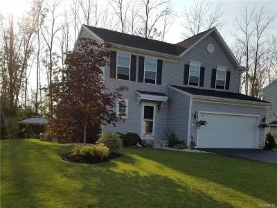 Grand Island Single Family Home A-Active: 18 Waterford Park