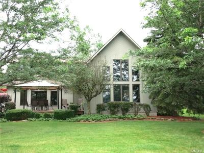 Grand Island Single Family Home A-Active: 2985 West River Road