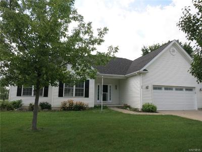 Grand Island Single Family Home A-Active: 20 Jen Court