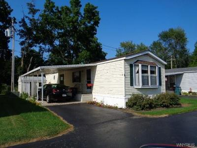 Single Family Home A-Active: 1645 Lockport-Olcott Rd #18