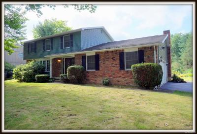 Orchard Park Single Family Home A-Active: 5161 Armor Duells Road