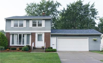 Amherst Single Family Home A-Active: 262 Willow Ridge Drive
