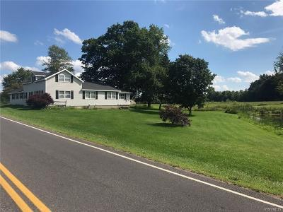 Genesee County, Livingston County, Monroe County, Ontario County, Orleans County, Wayne County Single Family Home A-Active: 11274 Lummisville Road