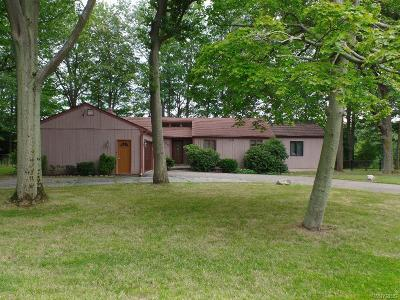 Hamburg Single Family Home A-Active: 1409 Stainton Drive