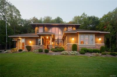 Ellicottville NY Single Family Home A-Active: $995,000