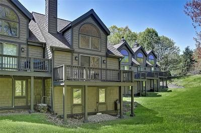 Ellicottville Condo/Townhouse A-Active: 97 Brookline Rd-The Woods