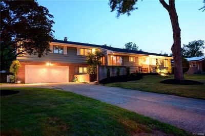 Amherst Single Family Home A-Active: 65 Meadow Stream Drive
