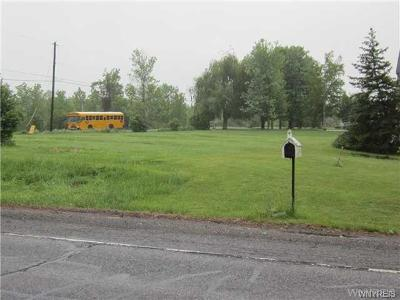 Residential Lots & Land A-Active: 6598 Rapids Road