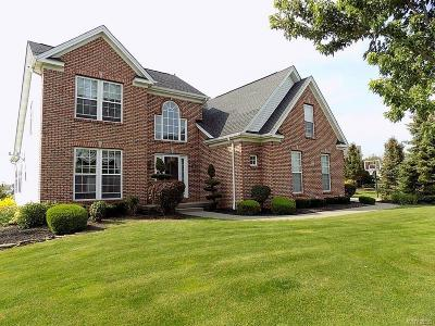 Single Family Home A-Active: 6222 Willow Run Court