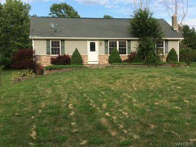 Darien Single Family Home A-Active: 10485 Alleghany Road