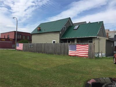 Buffalo Single Family Home A-Active: 608 & 610 South Park Avenue