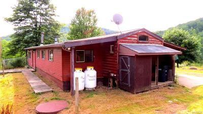 Portville Single Family Home A-Active: 1542 Lillibridge Road