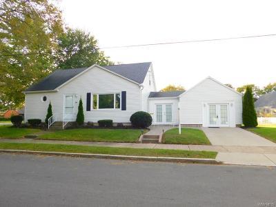 Niagara Falls Single Family Home A-Active: 806 85th Street