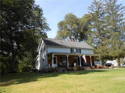 West Seneca Single Family Home A-Active: 96 Winspear Road