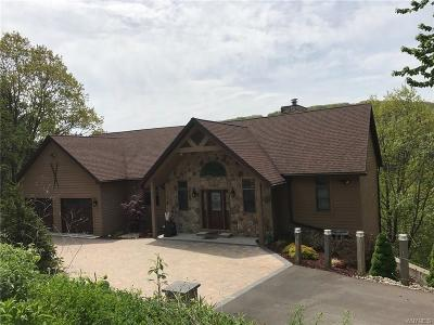 Ellicottville Single Family Home A-Active: 6825 Niles Road