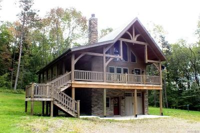 Ellicottville Single Family Home A-Active: 7000 Crane Road