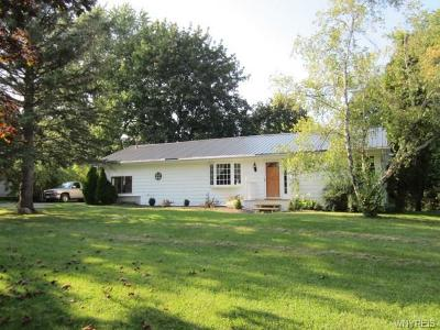 Stafford Single Family Home A-Active: 5493 Clinton Street Road