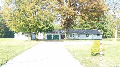 Lewiston Single Family Home A-Active: 553 Pletcher Road