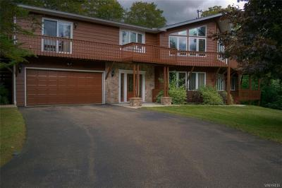 Ellicottville Single Family Home A-Active: 6625 Thistle Road