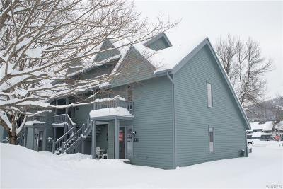 Ellicottville Condo/Townhouse A-Active: 108 Wildflower
