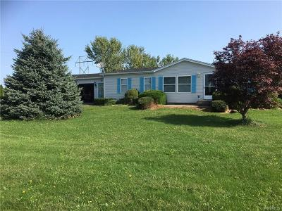 Hanover NY Single Family Home A-Active: $139,900
