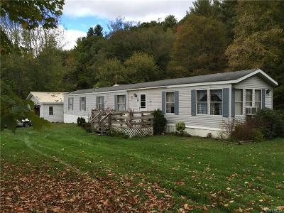 Cuba Single Family Home A-Active: 4476 Route 305