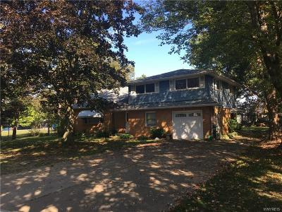 Orchard Park Single Family Home A-Active: 5304 Big Tree Road